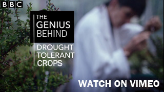 BBC The Genius Behind Drought Tolerant Crops - Watch on Vimeo