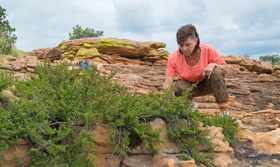 Prof. Jill Farrant with Myrothamnus in the Waterberg